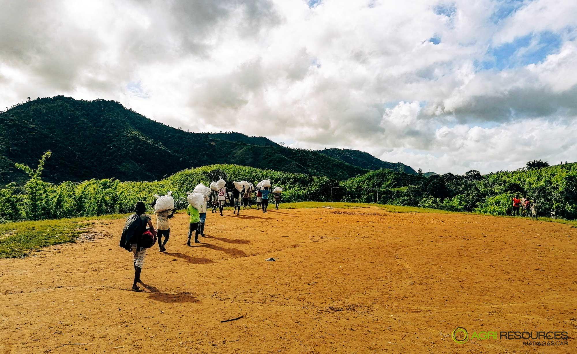 Green-Vanilla-Campaign-2021---Agri-Resources-Madagascar-5
