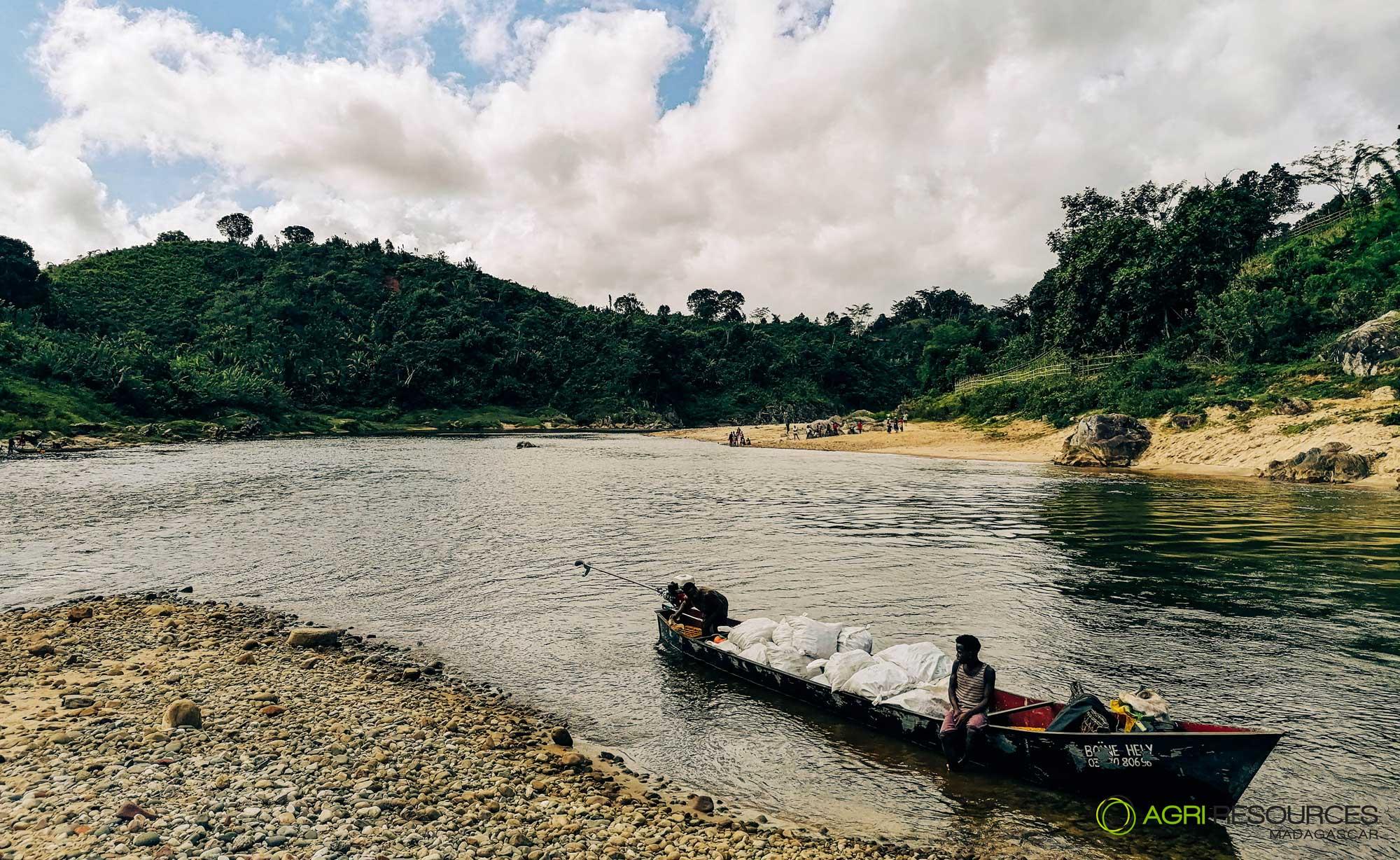 Green-Vanilla-Campaign-2021---Agri-Resources-Madagascar-8
